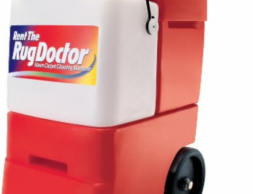 3 Reasons To Hire A Professional Carpet Cleaner Over A Rental Machine