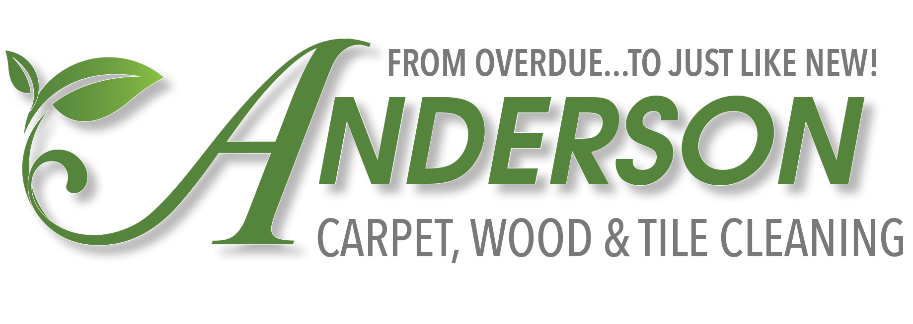Anderson Carpet, Wood & Tile Cleaning Logo